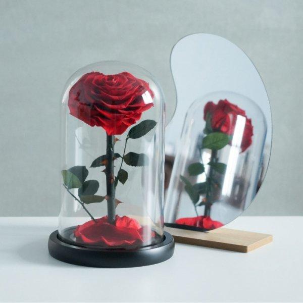 巨輪愛心永生花玫瑰 1